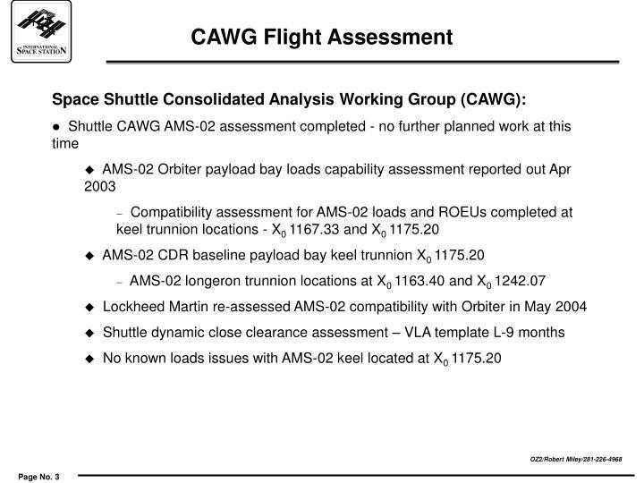 Cawg flight assessment