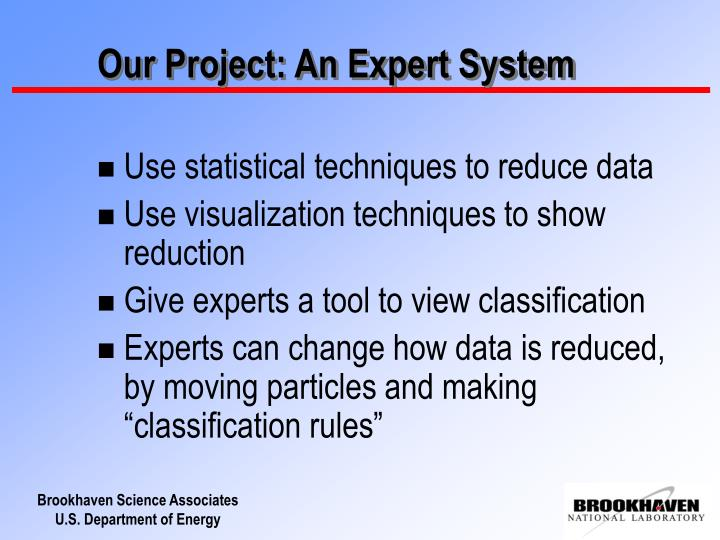 Our project an expert system