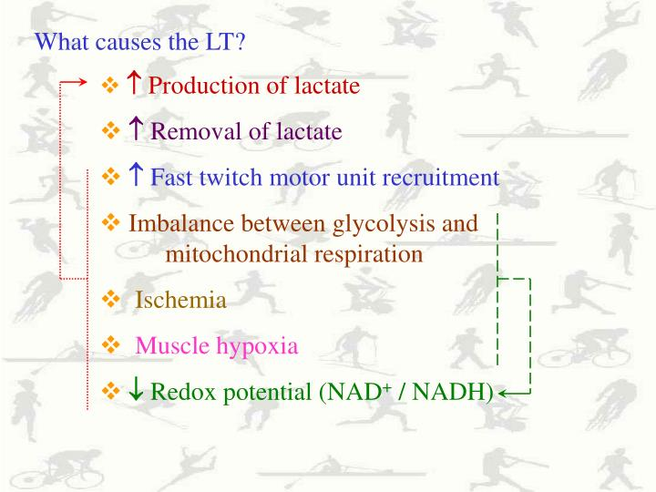 What causes the LT?