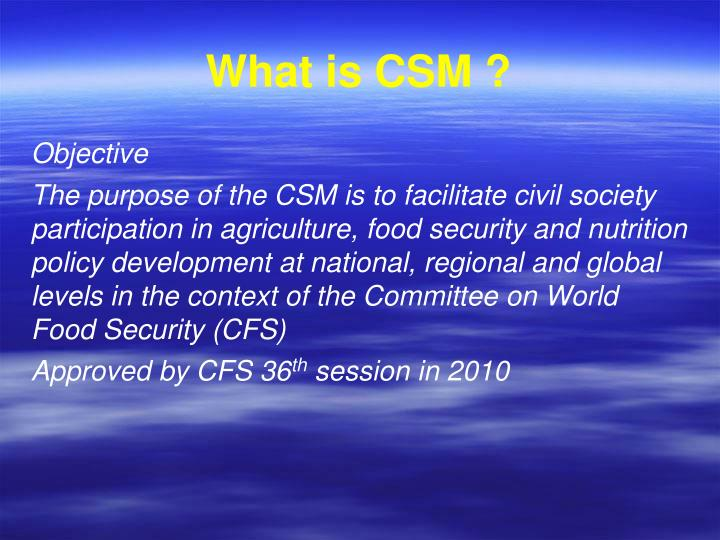 What is CSM ?