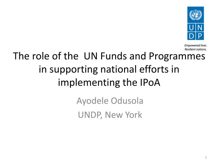 the role of the un funds and programmes in supporting national efforts in implementing the ipoa n.