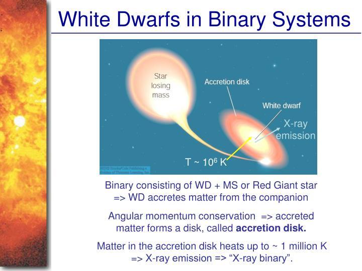 White Dwarfs in Binary Systems