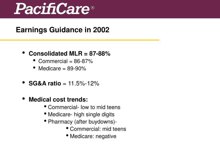 Earnings Guidance in 2002