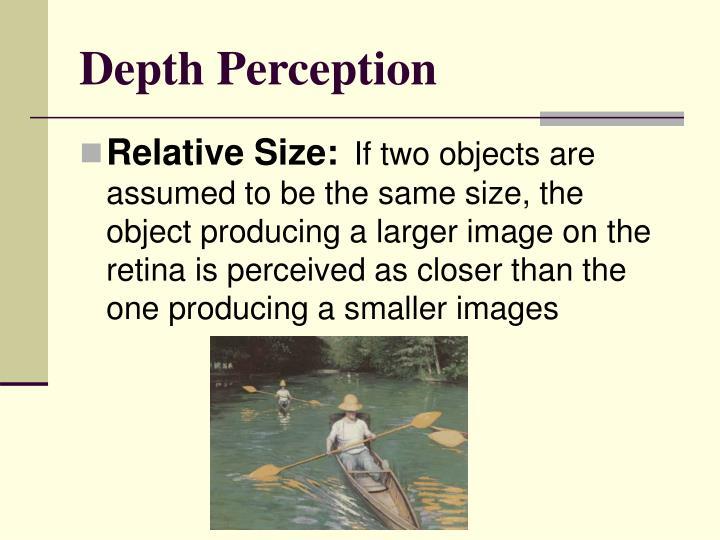 Depth Perception