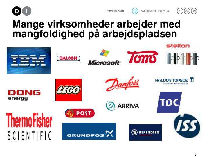 Mange virksomheder arbejder med mangfoldighed p arbejdspladsen