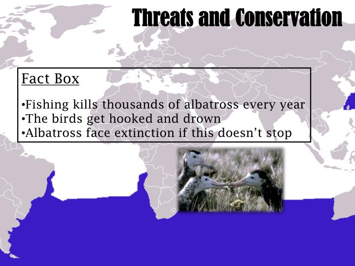 Threats and Conservation