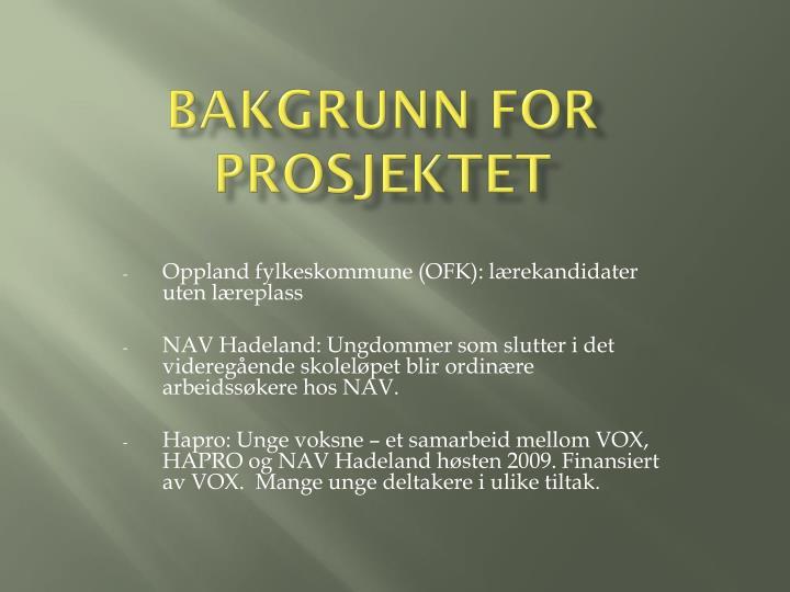 Bakgrunn for prosjektet