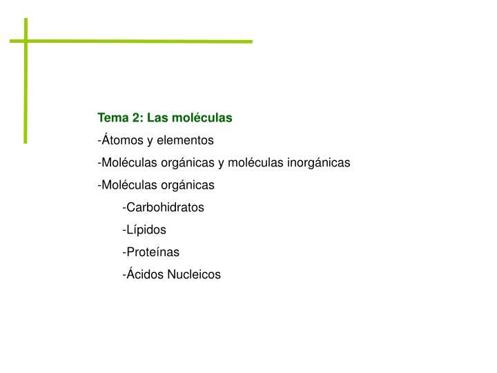 Tema 2: Las moléculas