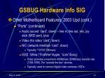 gsbug hardware info sig20