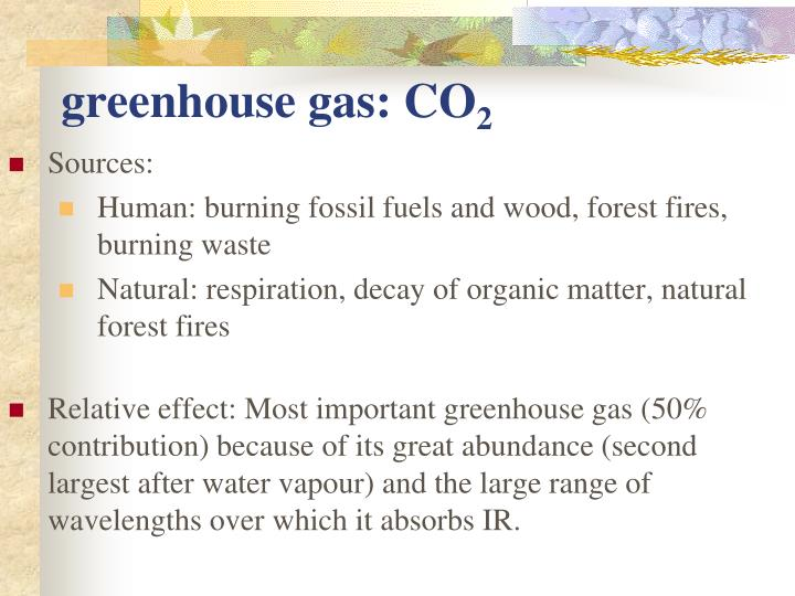 greenhouse gas: CO