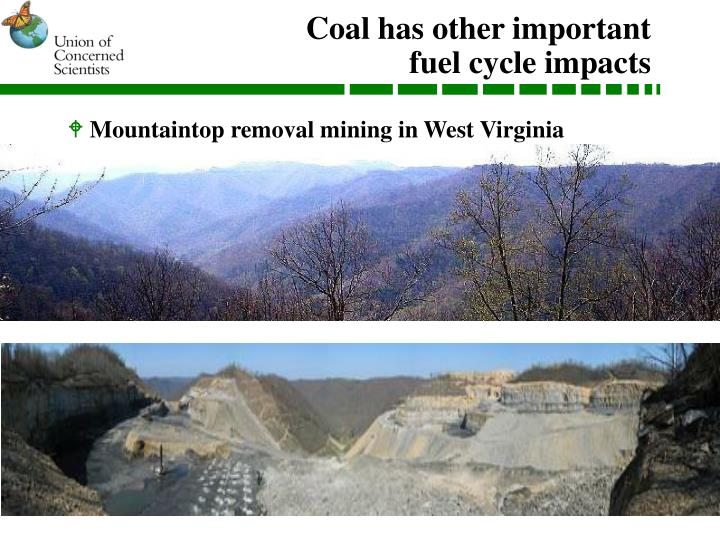 Coal has other important