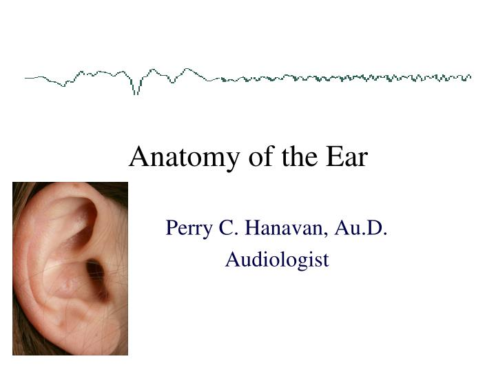 Ppt Anatomy Of The Ear Powerpoint Presentation Id4510844