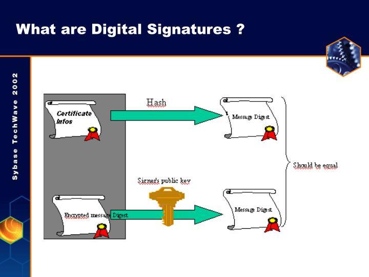 What are Digital Signatures ?