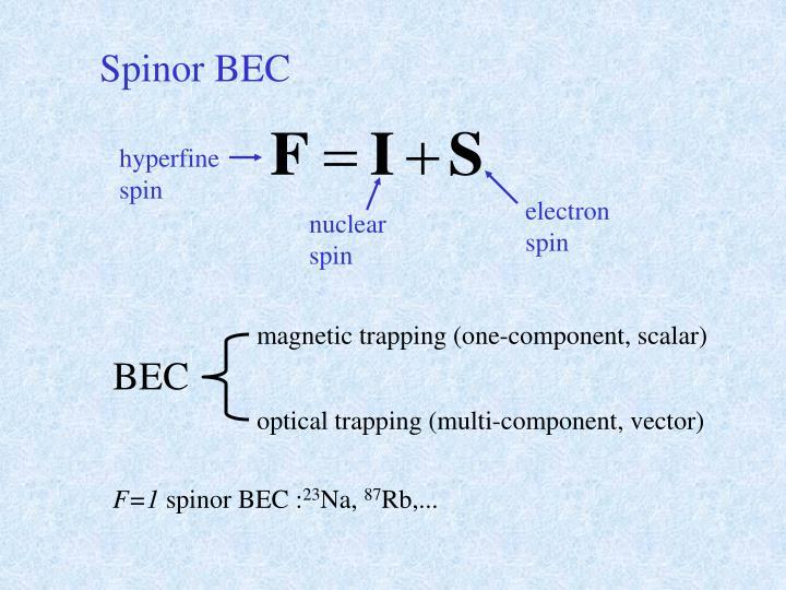 Spinor BEC