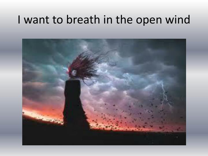 I want to breath in the open wind