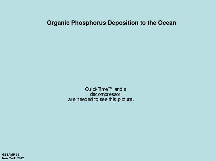 Organic Phosphorus Deposition to the Ocean