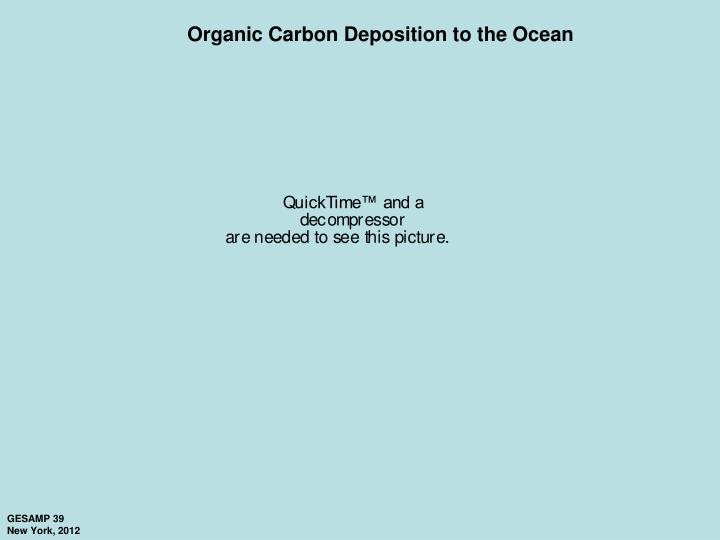 Organic Carbon Deposition to the Ocean