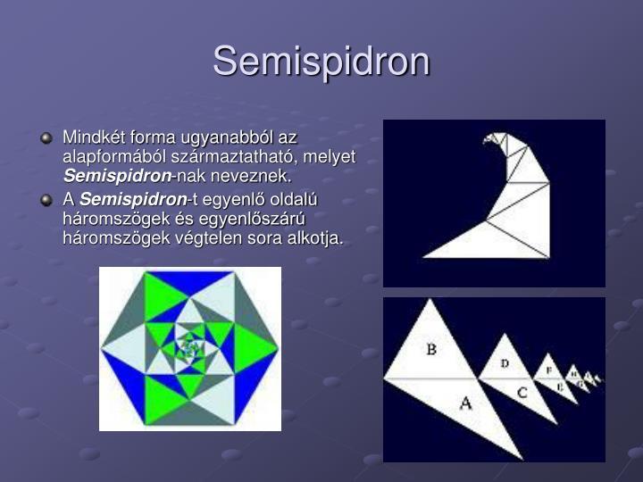 Semispidron