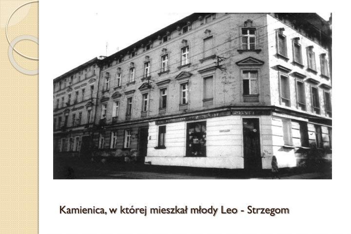 Kamienica, w której mieszkał młody Leo - Strzegom