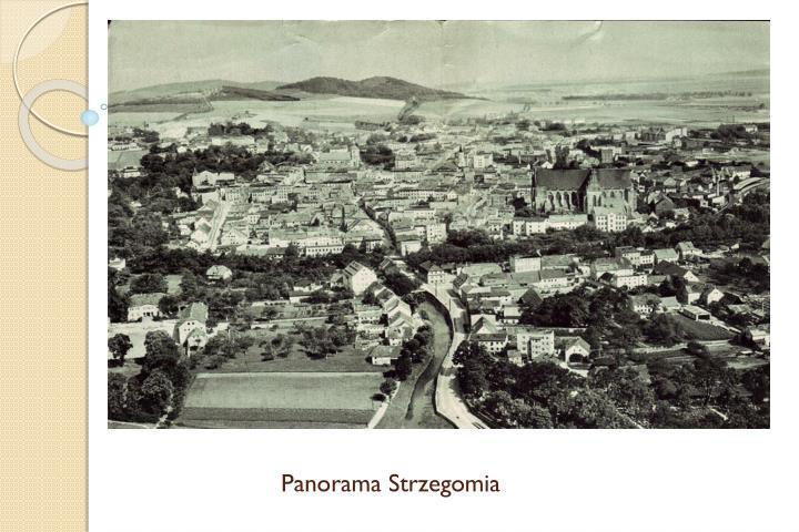 Panorama Strzegomia