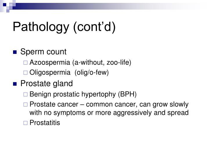 Pathology (cont'd)