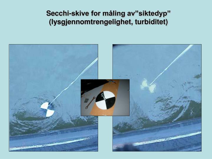 """Secchi-skive for måling av""""siktedyp"""""""