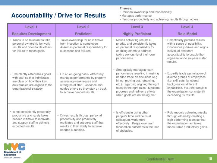 Accountability / Drive for Results