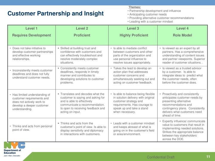 Customer Partnership and Insight