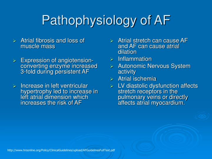 Atrial fibrosis and loss of muscle mass