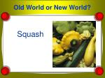 old world or new world7