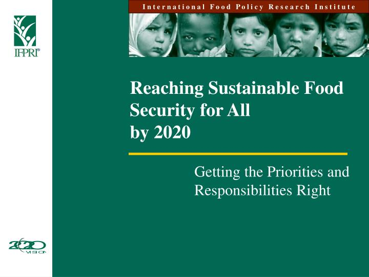 reaching sustainable food security for all by 2020 n.