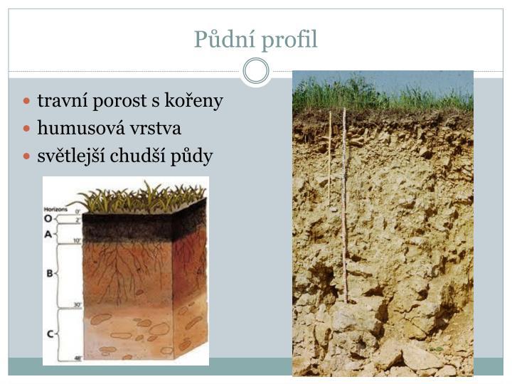 Půdní profil
