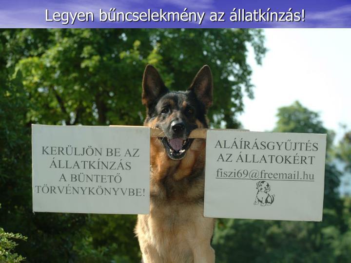 Legyen bűncselekmény az állatkínzás!