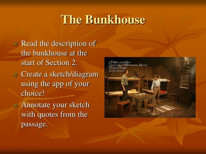 the bunkhouse - powerpoint ppt presentation
