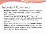 important commands2