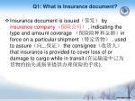 q1 what is insurance document