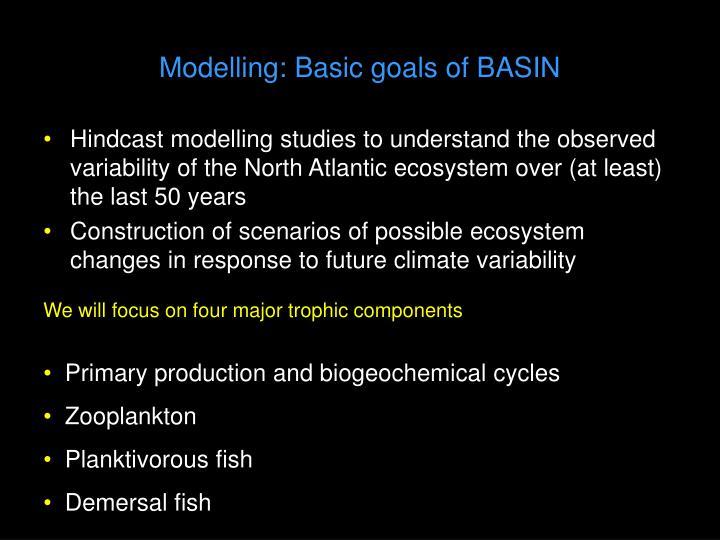 Modelling: Basic goals of BASIN