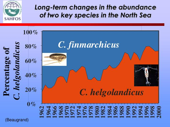 Long-term changes in the abundance