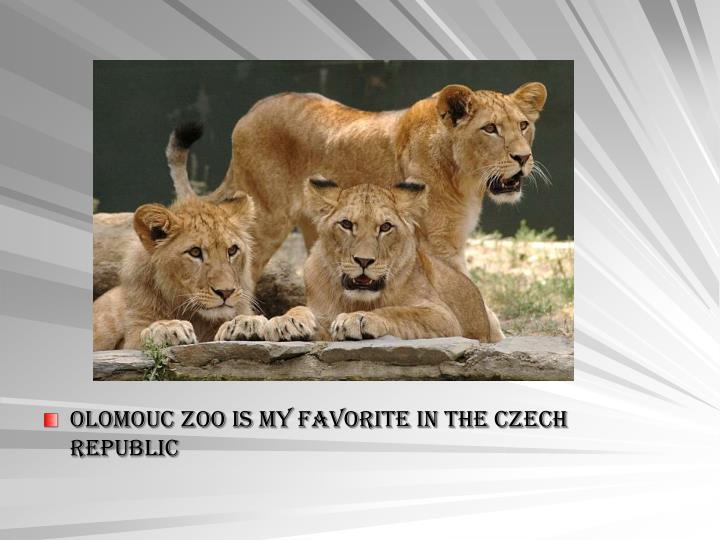Olomouc zoo is my favorite in the Czech Republic