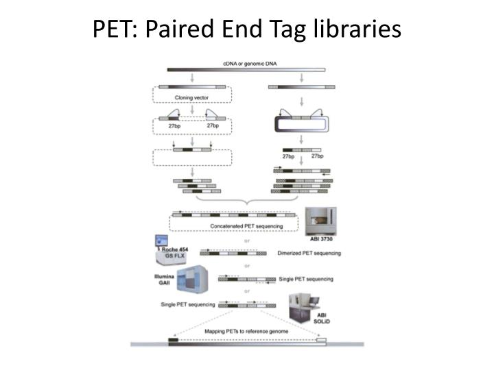 PET: Paired End Tag libraries