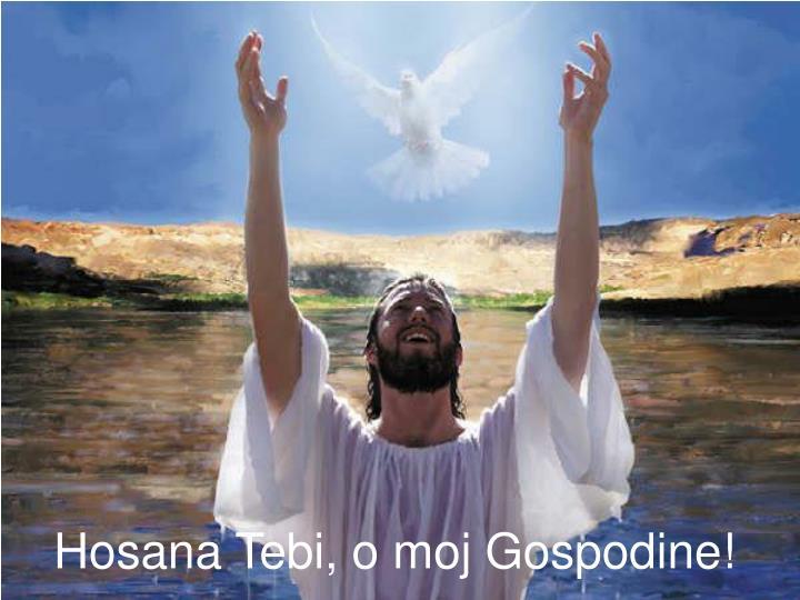 Hosana Tebi, o moj Gospodine!