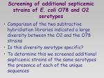 screening of additional septicemic strains of e coli o78 and o2 serotypes