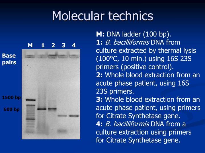 Molecular technics