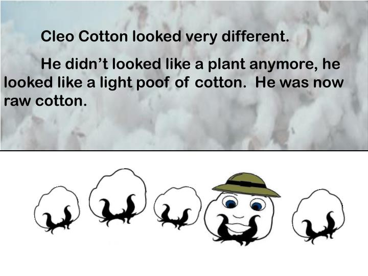 Cleo Cotton looked very different.