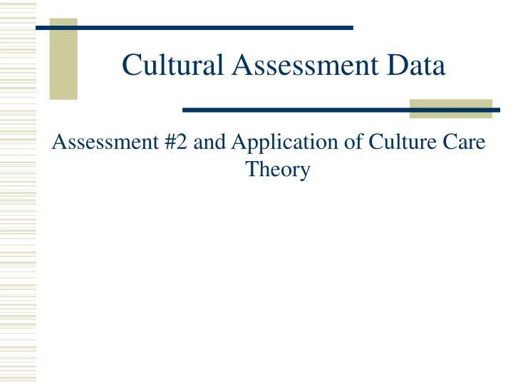 Cultural Assessment Data