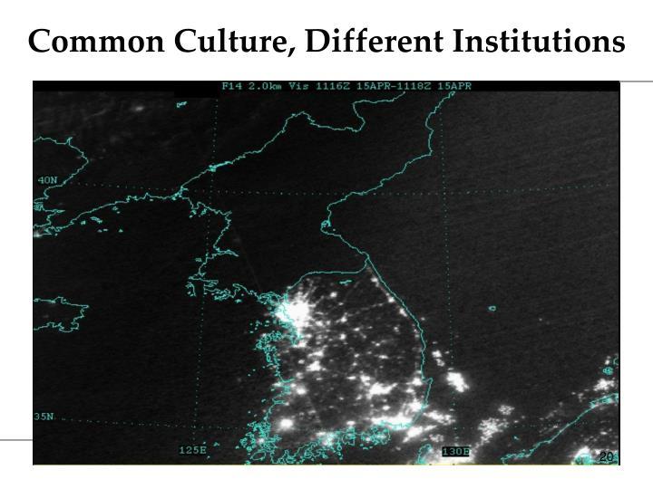 Common Culture, Different Institutions