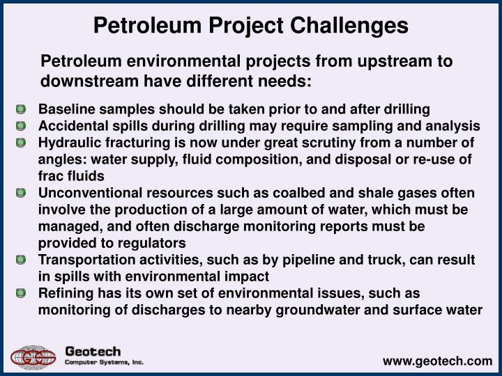 Petroleum project challenges