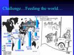 challenge feeding the world