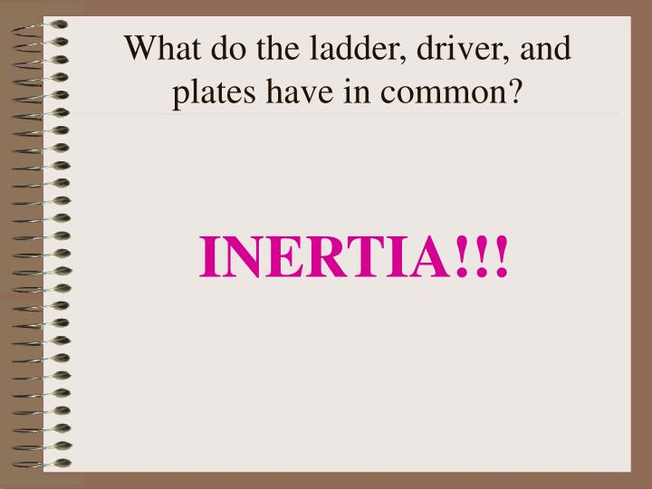 What do the ladder, driver, and plates have in common?