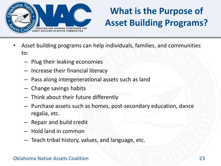 What is the Purpose of Asset Building Programs?